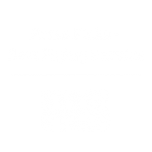 Press Picks, Best Flying Service
